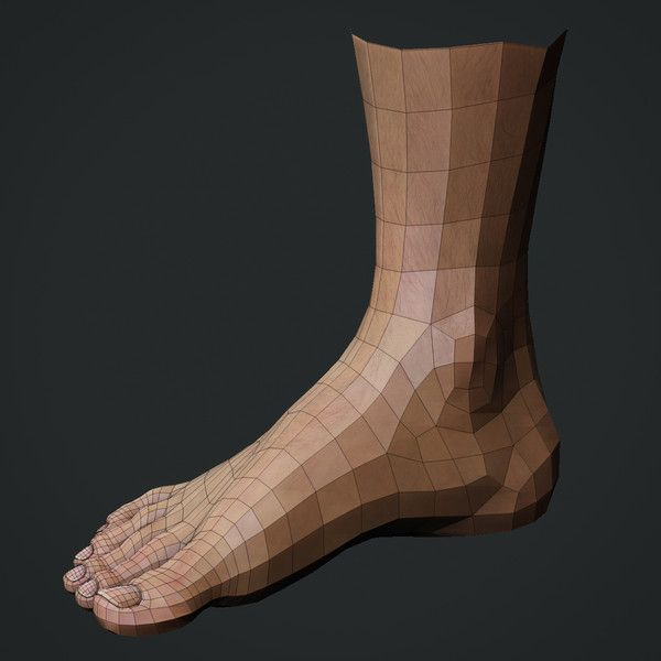 foot_wireframe_02.jpg388e7b7d-da10-40fd-b1f2-4bfb2df34608Large.jpg (600×600)
