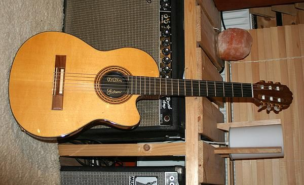 Gibson Chet Atkins 1 Jpg