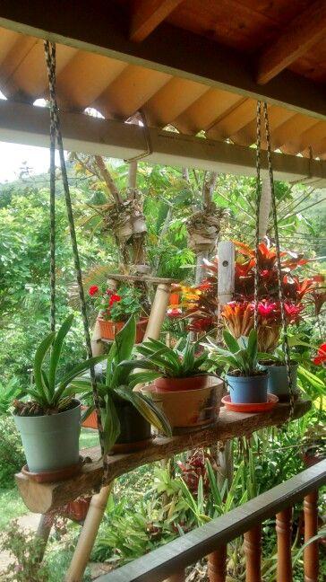 Tronco de madera colgado con soga sitio ideal para - Troncos para jardin ...