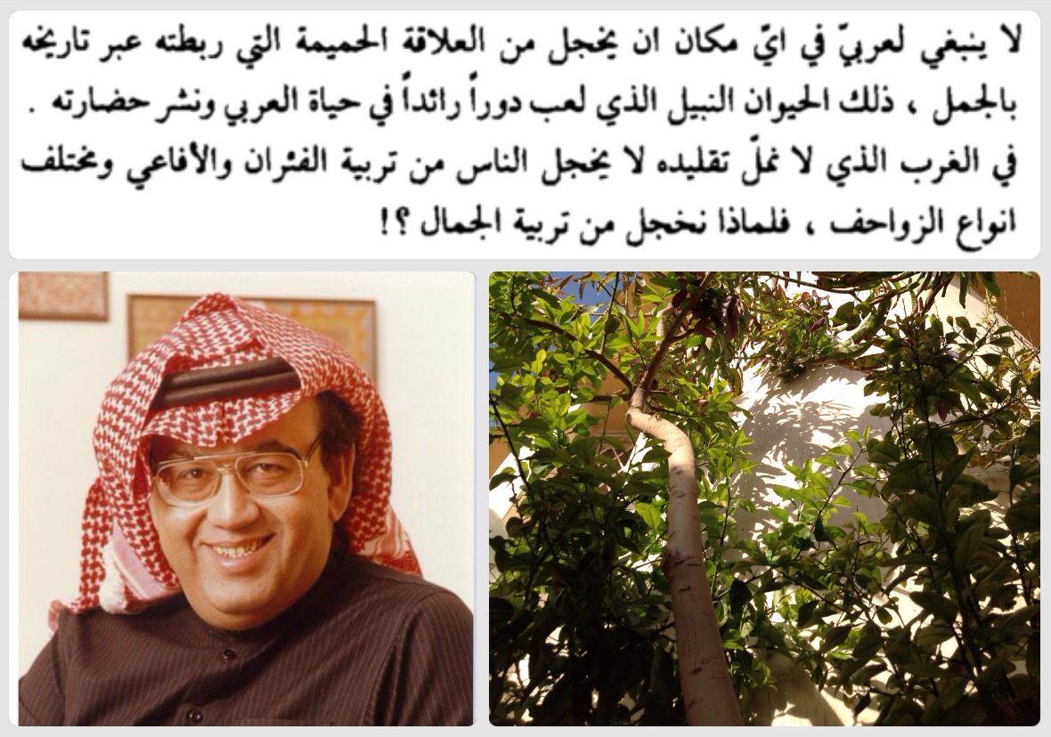 غازي القصيبي Arabic Writer My Pictures Arabic Words