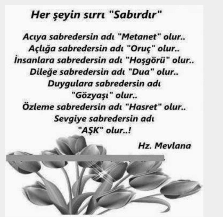 Instagram Photo By Mevlana Feb 14 2016 At 10 53am Utc Meaning Of Life Life Guide Life Lessons