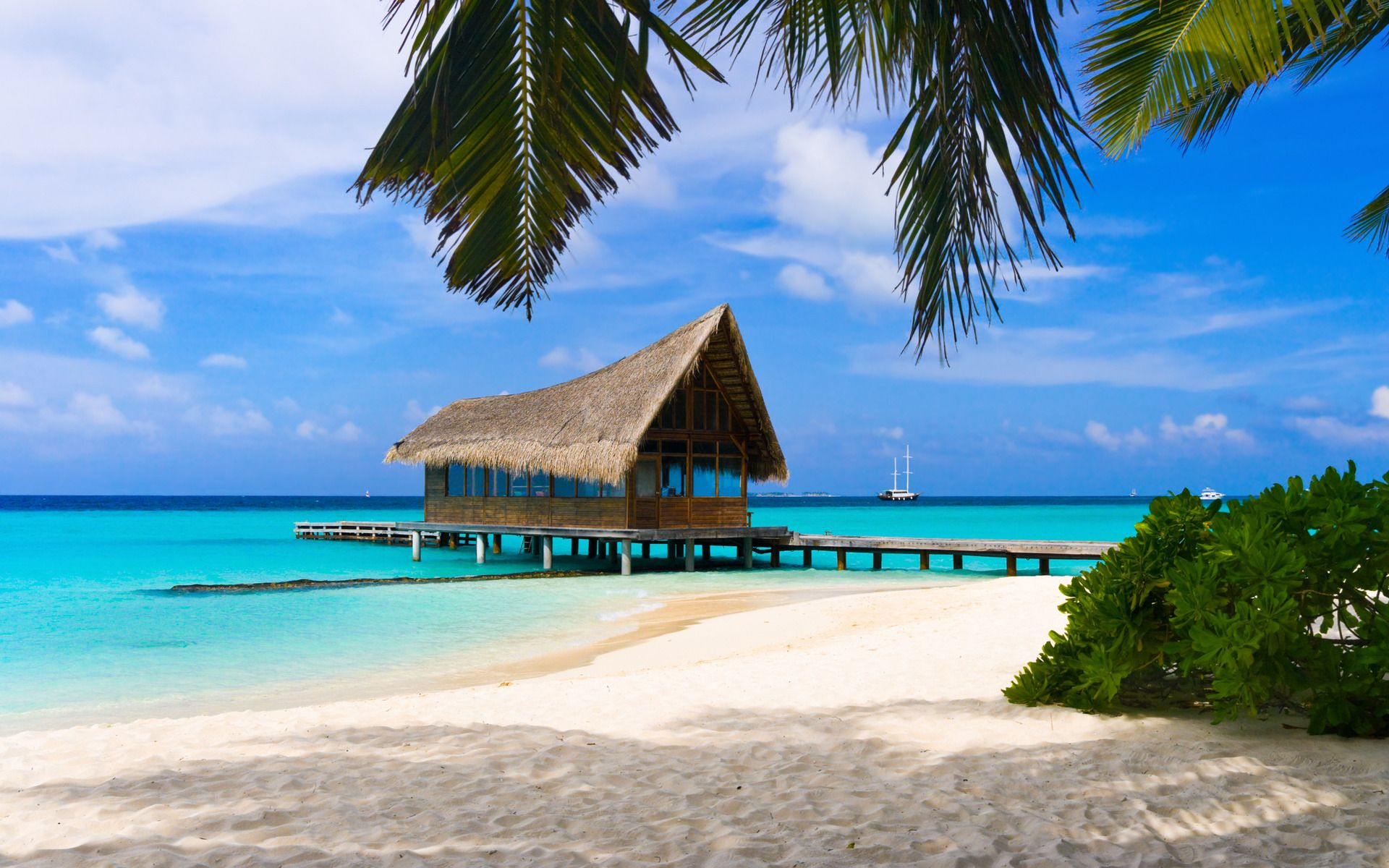 Bahamas Ah Beach Paradise Beach Wallpaper Island Resort