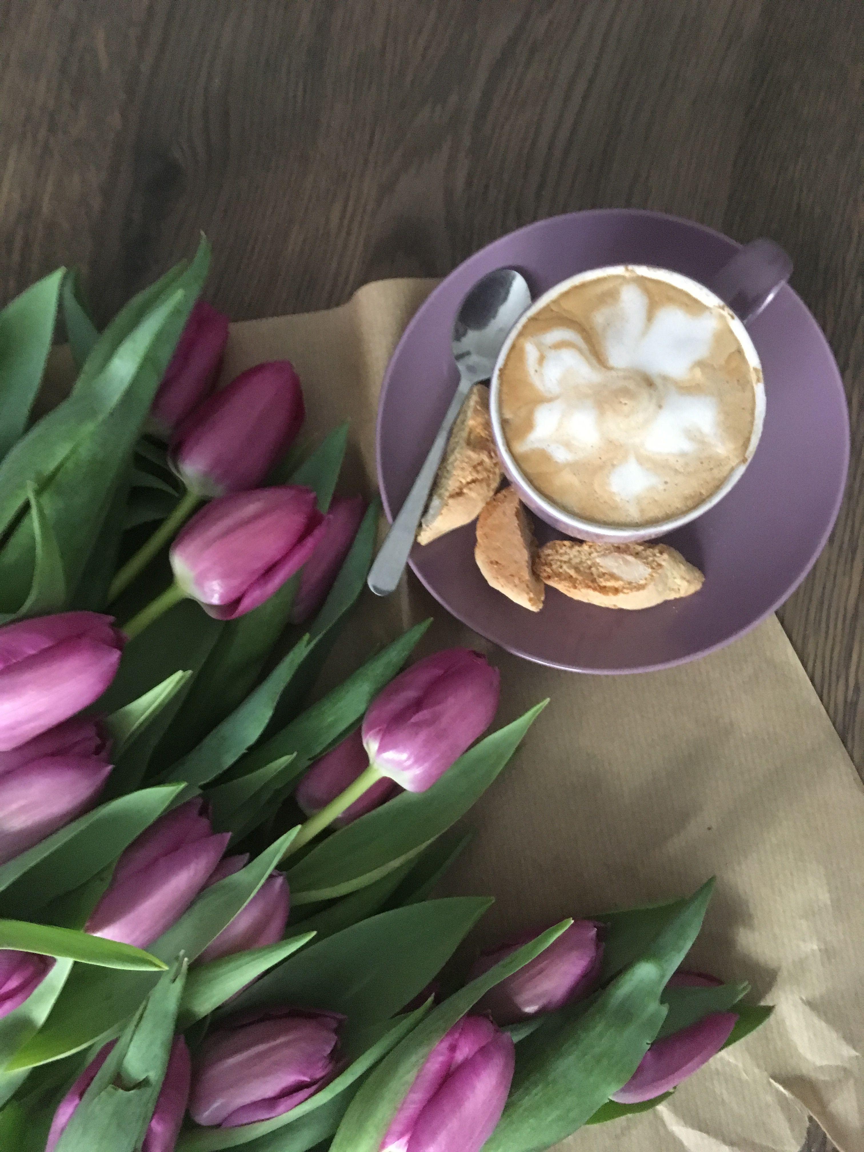 фото доброе утро с тюльпанами запрещает