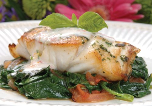 Easy grouper fillet recipes