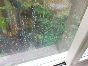 What To Do When Insulated Glass Windows Fail And Fog Up Window Seal Double Pane Windows Soundproof Windows