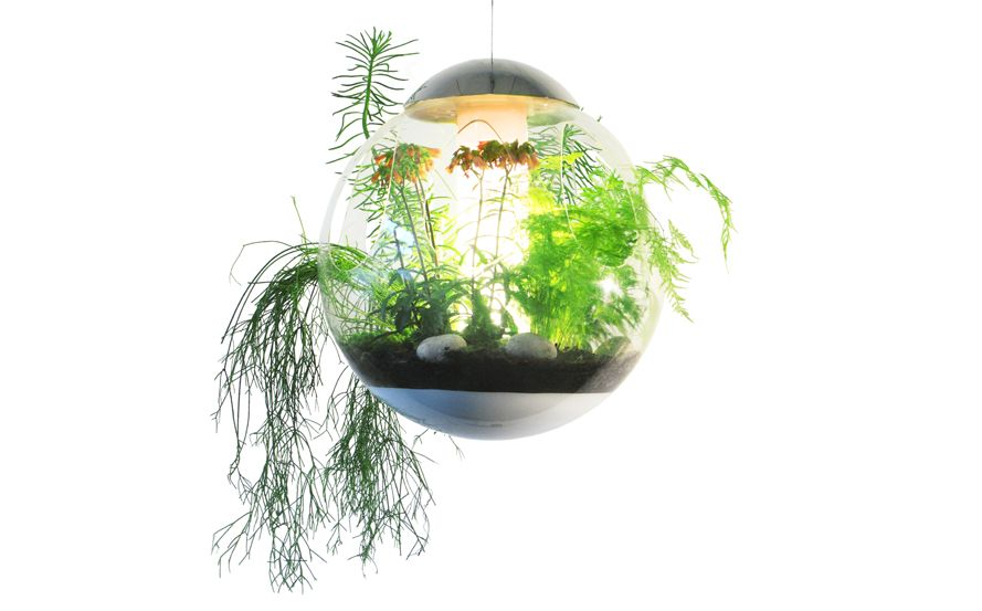 www.vegetal-atmosphere.fr en element 81