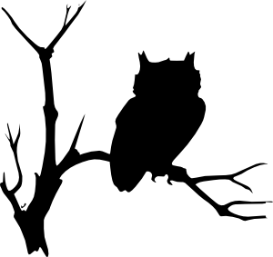 BlackLineDrawingsofOwls owl free clip art black simple