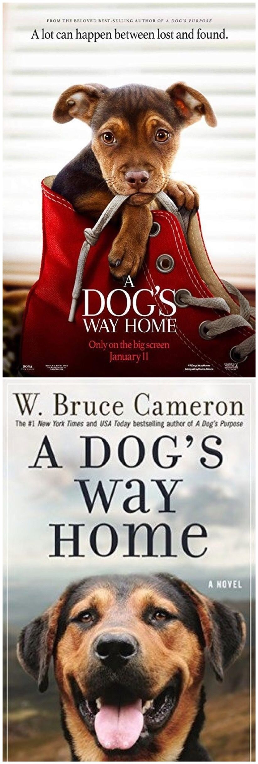 A Dog's Way Home Dog trailer, A dogs purpose, Dogs