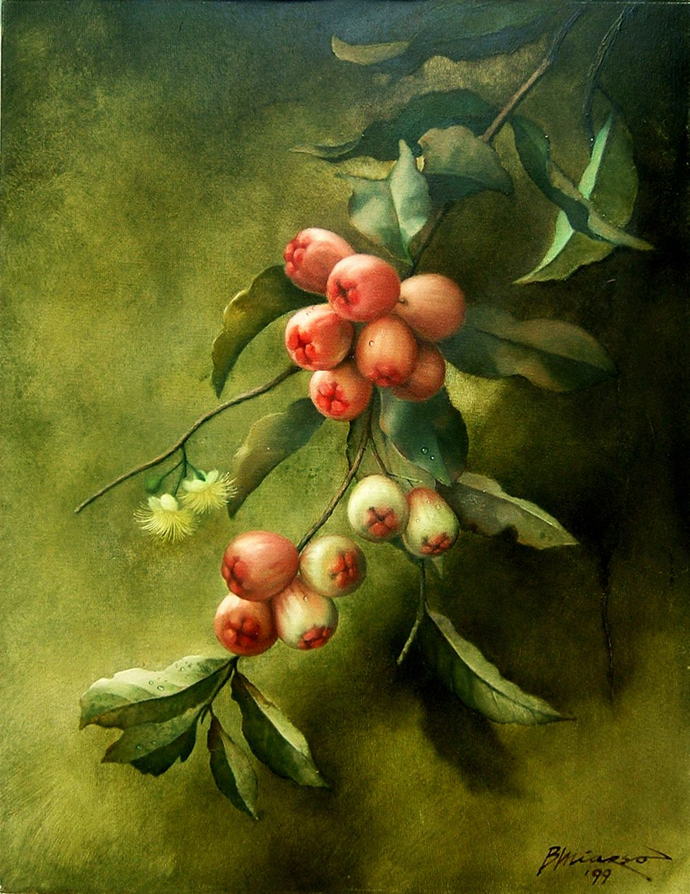 Image result for jambu tree painting
