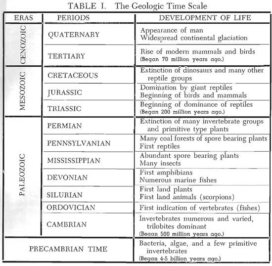 geologic time scale with life forms - Google Search | Geology ...