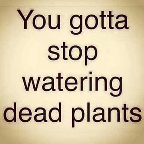 Stop Watering Dead Plants Bad Relationships Bad Friendships Stop Embracing Negativity Friendship Quotes Funny Friendship Quotes Words