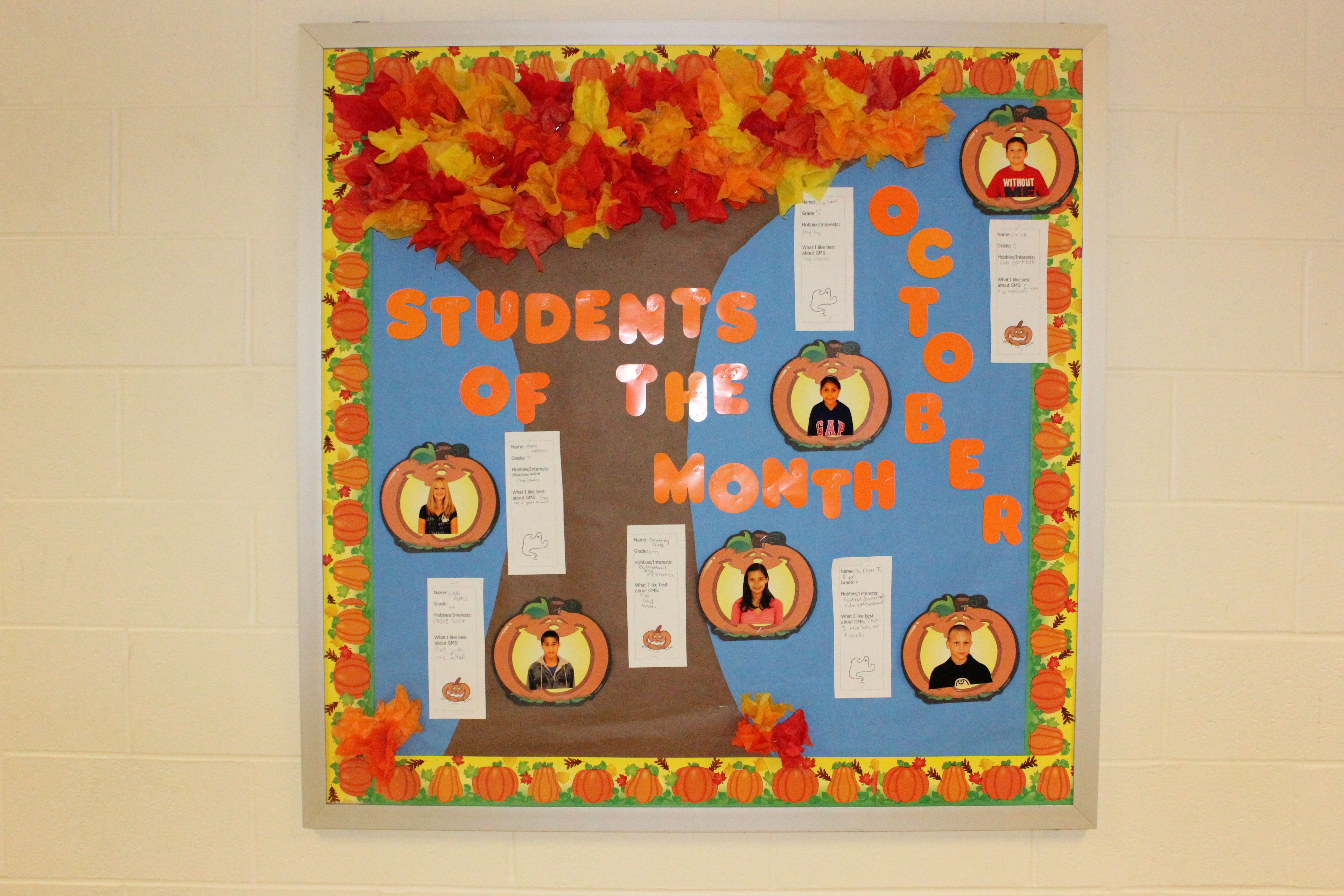 Teacher Resource 12 Gold Medal Olympic Bulletin Board Accents Teaching Supplies Home Garden