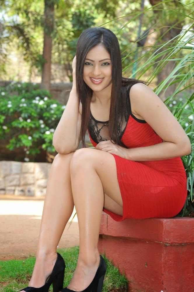 Nikesha Patel Hot Full Photo Gallery | Nikesha Patel HD Wallpapers | All  About Tollywood