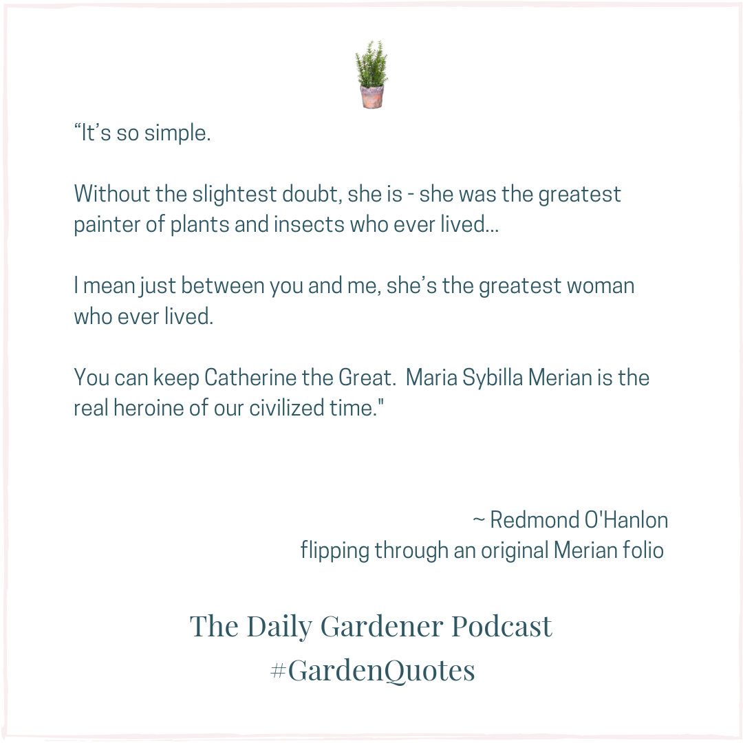 Pin By The Daily Gardener A National Weekday Gardening Podcast