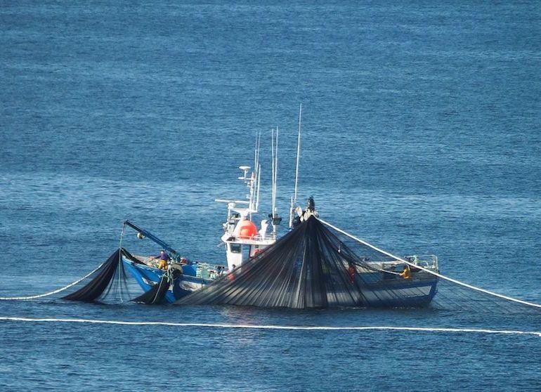 En 2016 application de l'interdiction de rejeter du poisson par-dessus bord