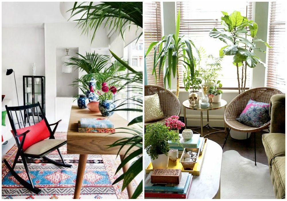01-estilo-tropical-plantas | bedroom makeover | Pinterest | Bedrooms