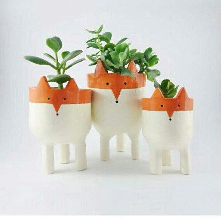 Vasinhos de raposas.