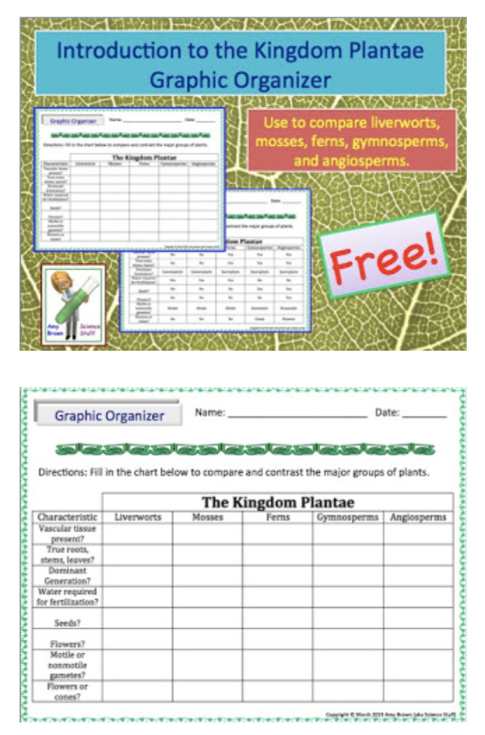 Free Graphic Organizer used to distinguish among the