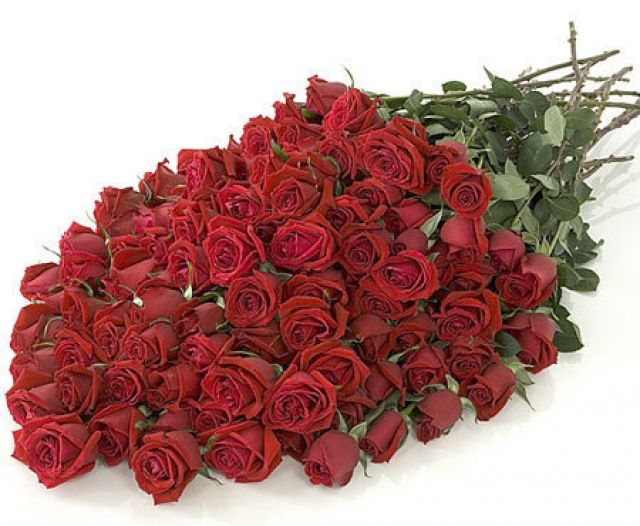 باقة ورد جوري بحث Google Love Flowers Red Roses 100 Roses
