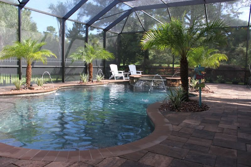 Tropical enclosures pool and patio ideas pinterest for Pool lanai cost
