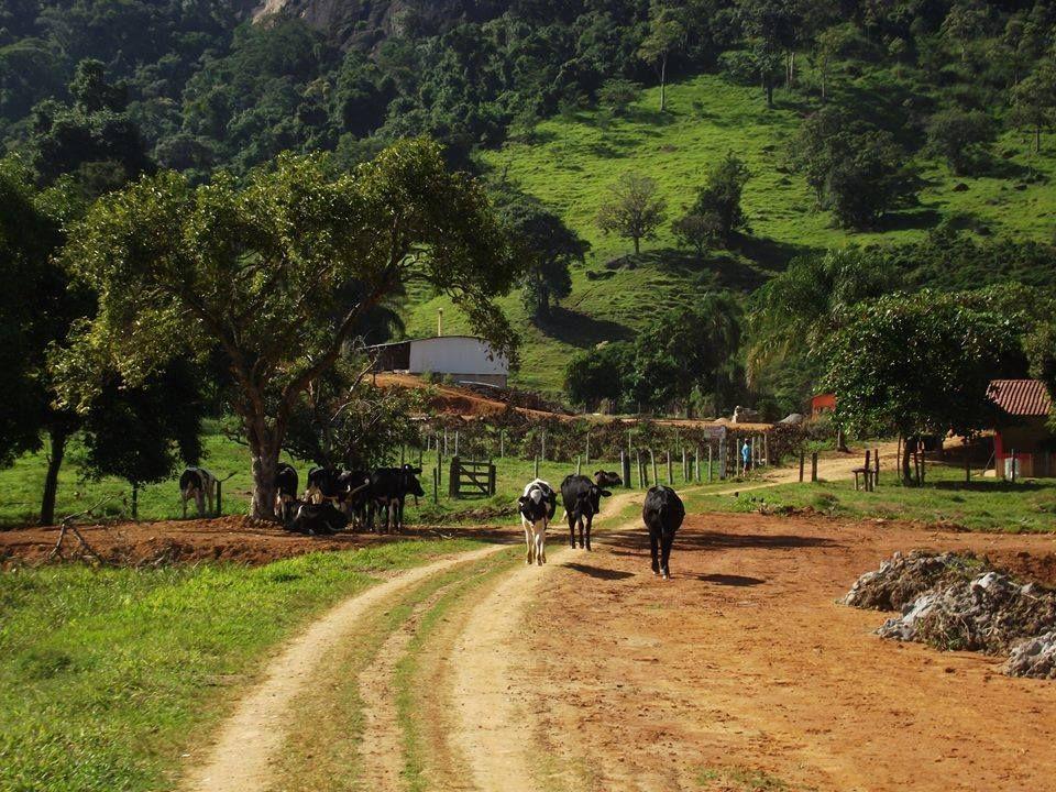 Paisagem Rural De Sao Jose Do Calcado Estado Do Espirito Santo