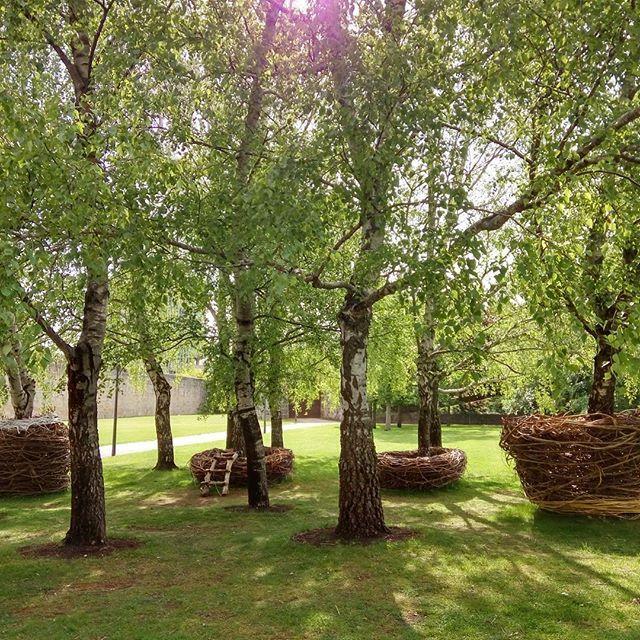 Parque de la Ciudadela, #Pamplona, para disfrutar de la naturaleza, la paz y el relax en el centro de la ciudad #Navarra (By marinanunez114 - #Instagram)