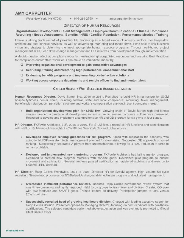 Hr Management Report Template Unique 1300 Resume Examples Awesome Images Sample Resume Cover Letter Resume Project Manager Resume Resume Writer