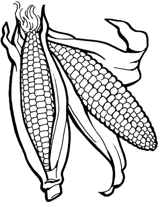 Corn The Vegetables Healthy Food Coloring Pages | Coloring pages ...