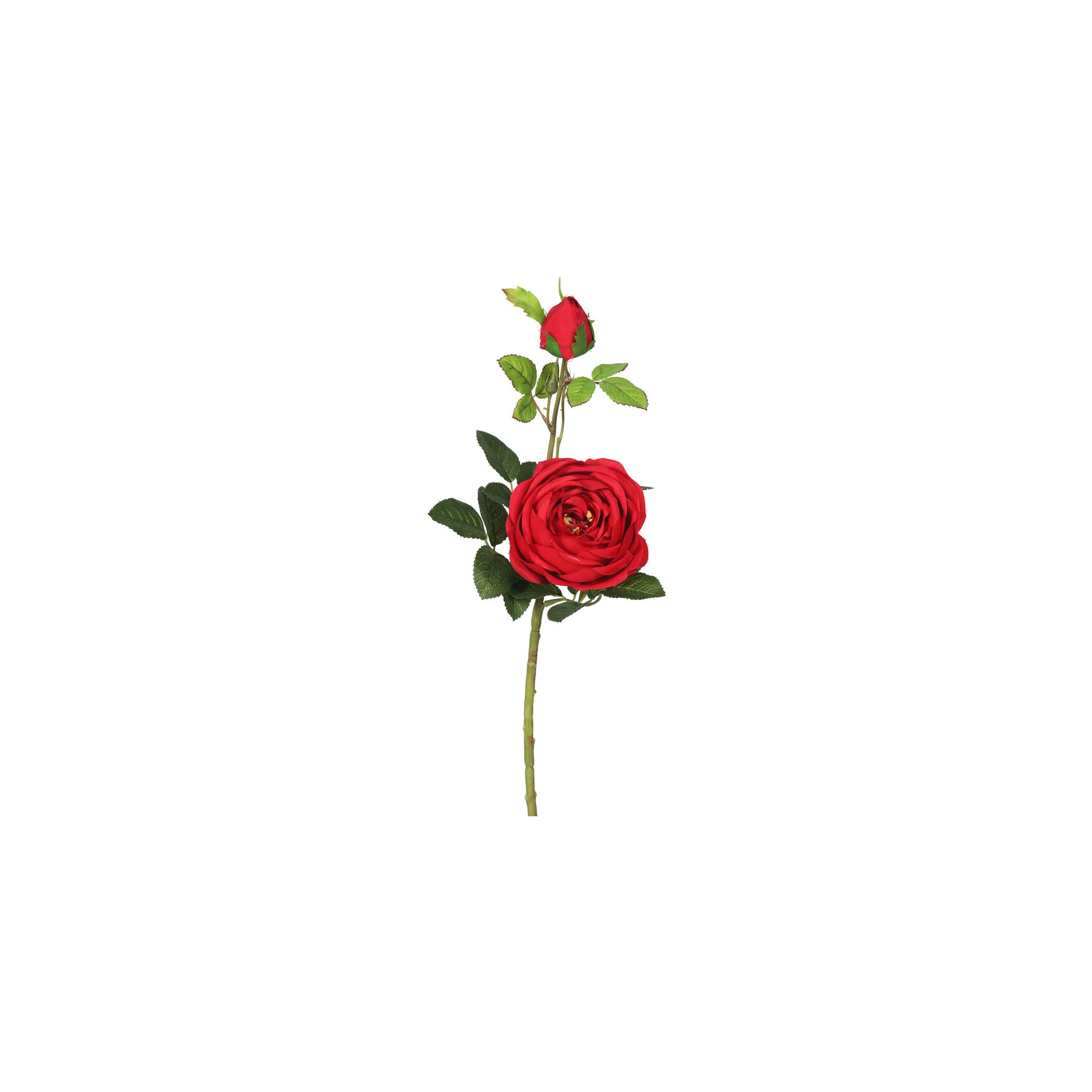 8606452b101c78120bb550f4783c7745 » Aesthetic Rose Drawing