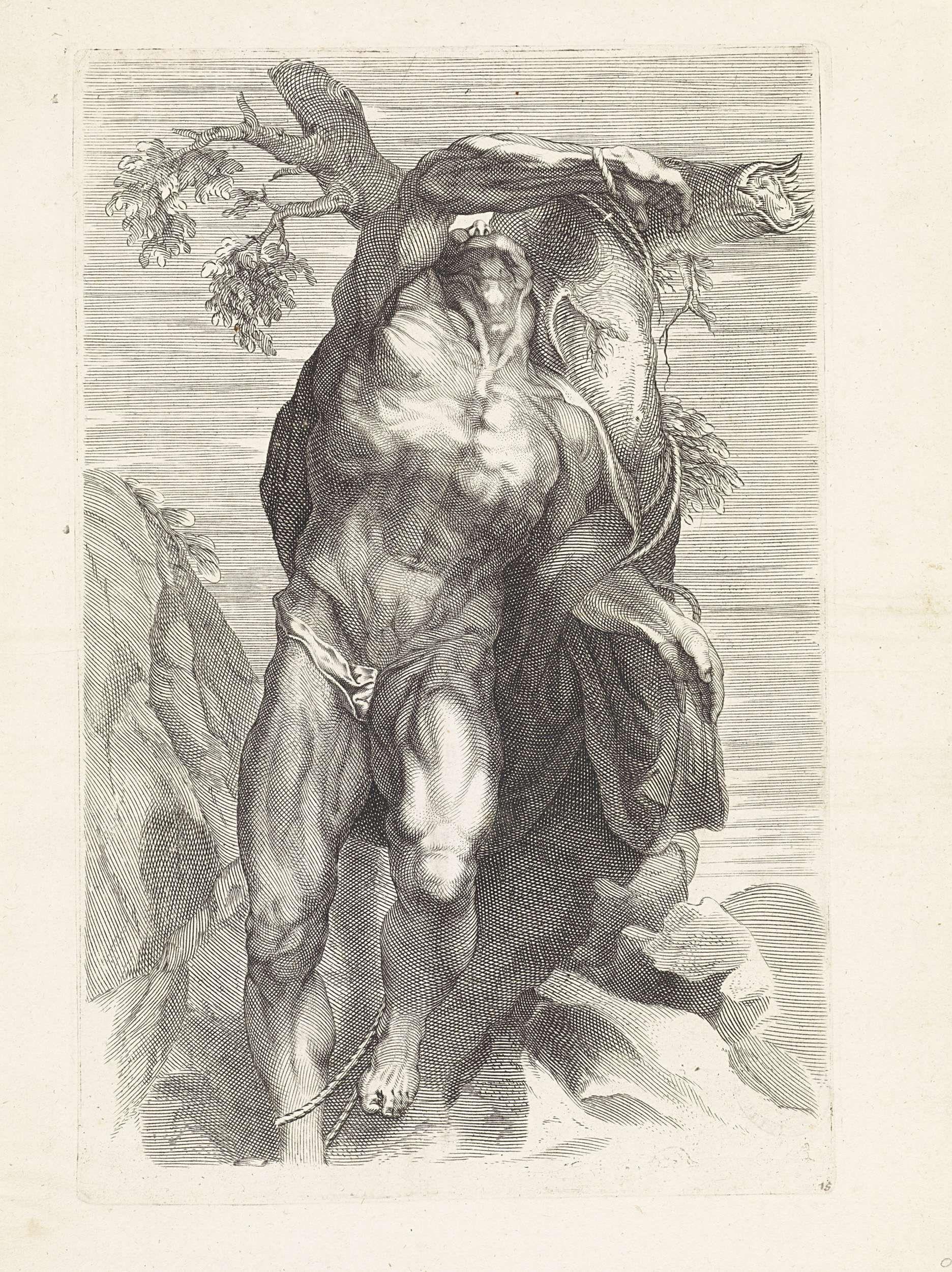 Paulus Pontius   Anatomische studie van een man die aan een boom is gebonden, Paulus Pontius, Peter Paul Rubens, 1616 - 1657  