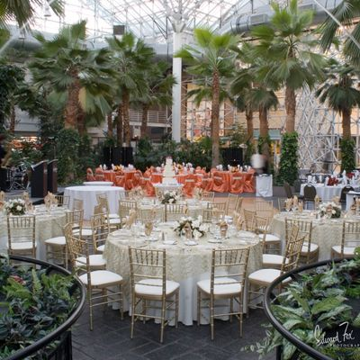 The Crystal Gardens At Navy Pier Wedding