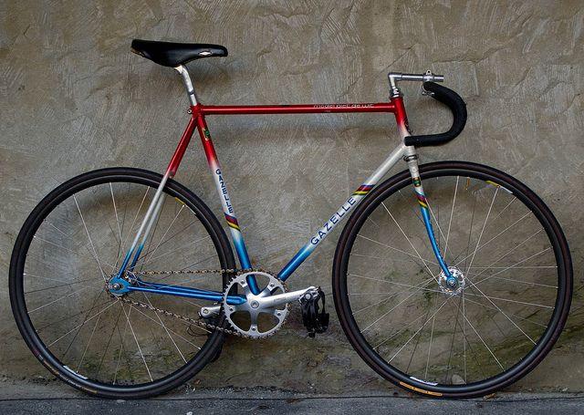 Gazelle Track Bike Olahraga