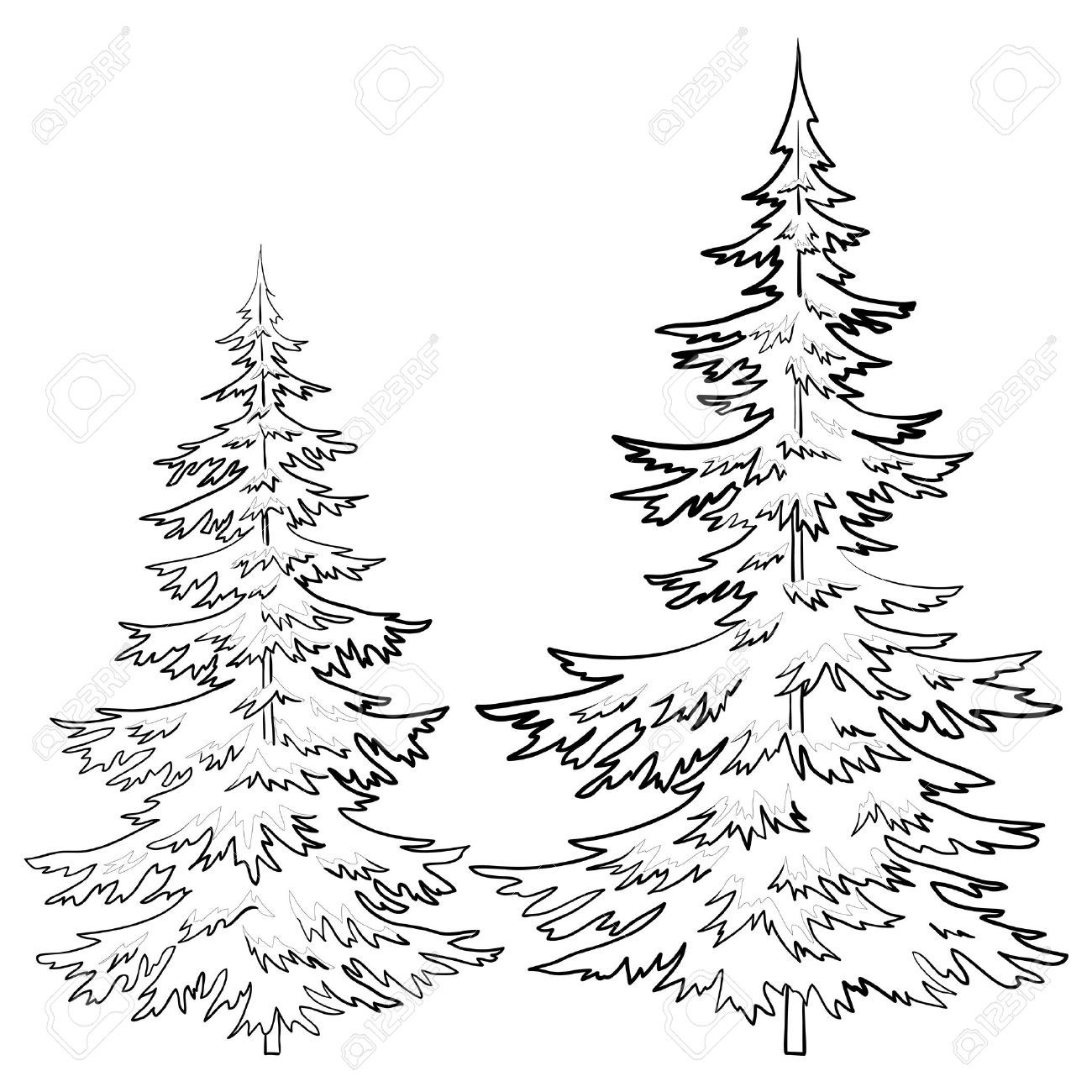 Trees fur tree vector christmas winter symbol isolated see a rich collection of stock images vectors or photos for outline tree you can buy on shutterstock biocorpaavc Image collections