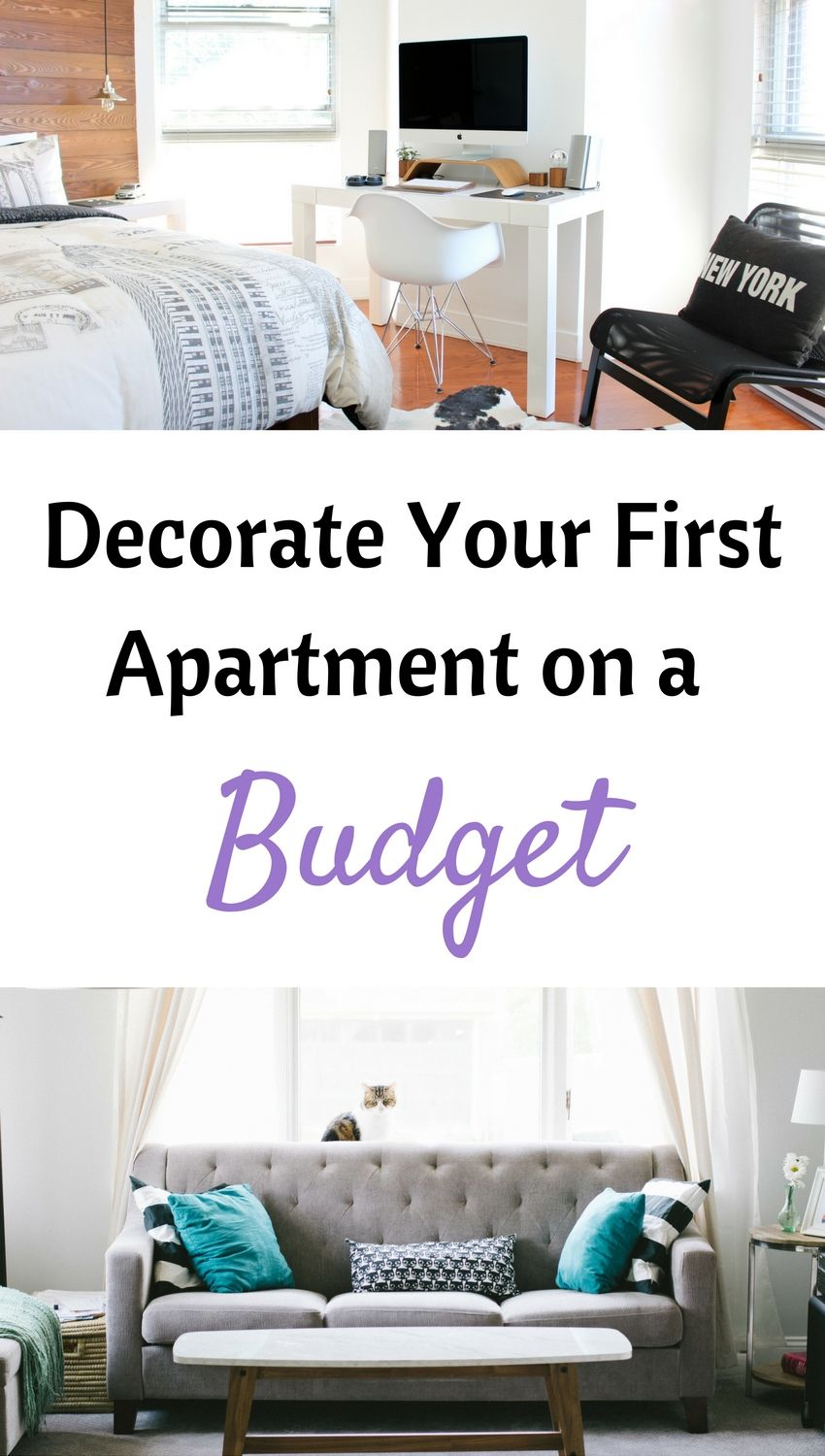 How To Decorate Your First Apartment On A Budget With Images