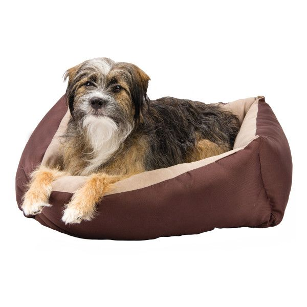 10 Must Have Dog Products For Winter Dogs Heated Pet Beds Pets