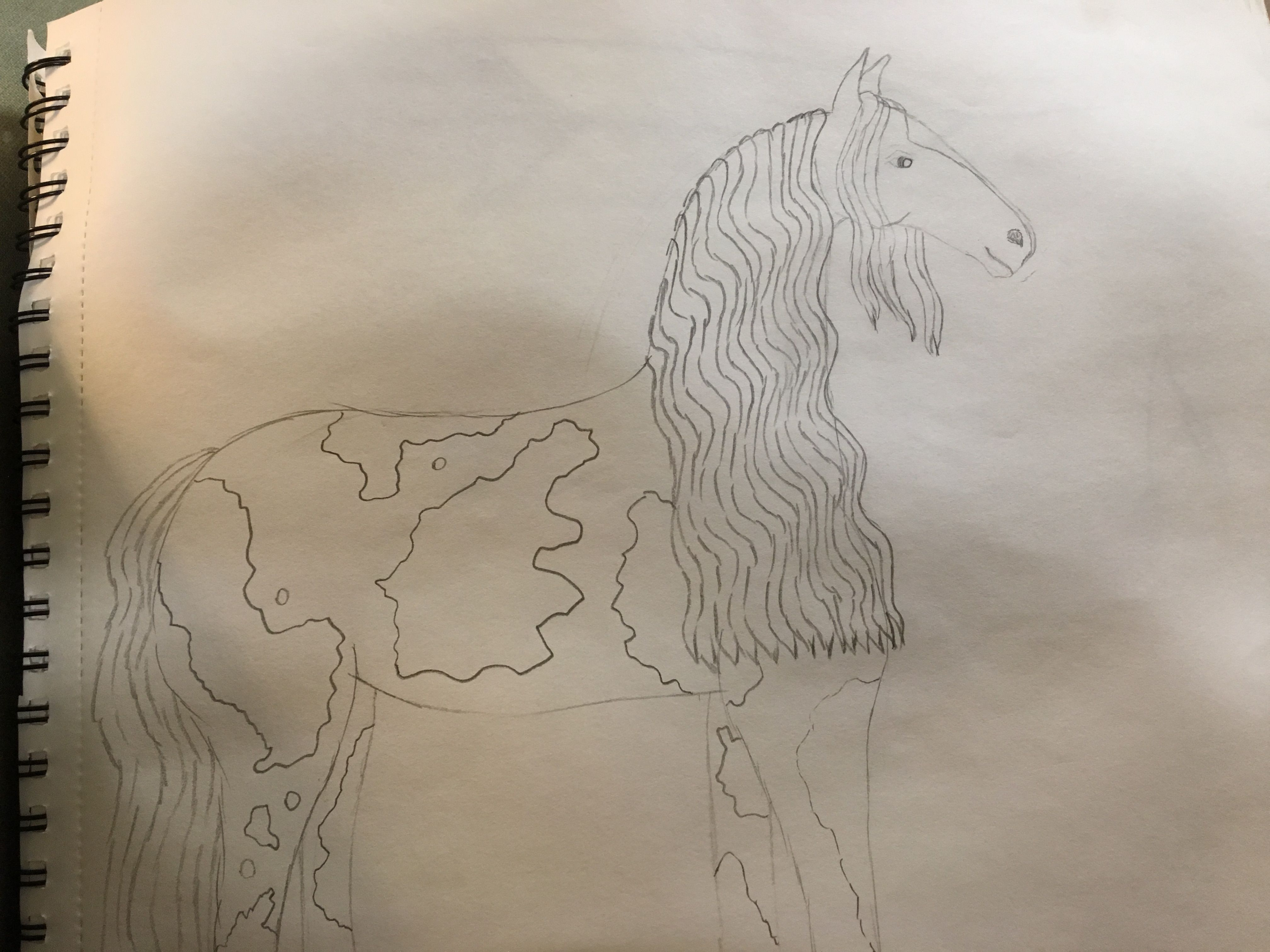 A drawing of one of my horses: RQH Daisy