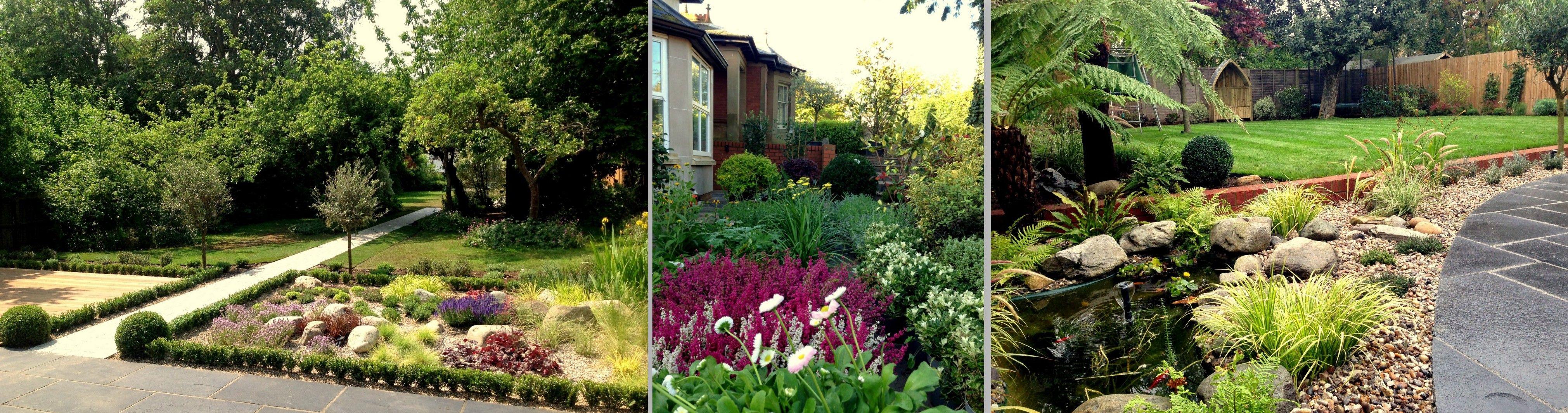 Contemporary Garden Design Contemporary Planting Ideas Planten Exeter Devon