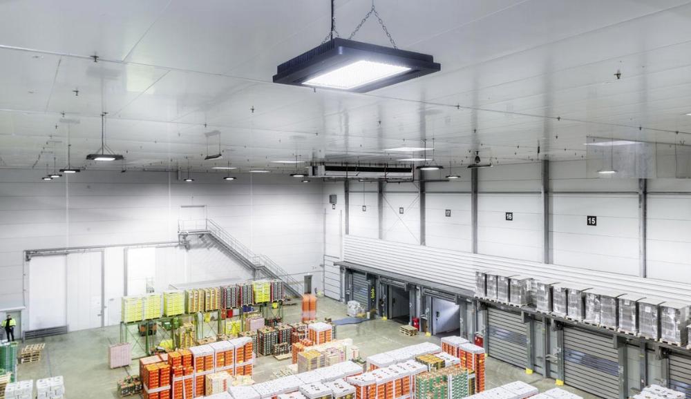 Light management in industry in 2020   Lighting solutions, Arnsberg,  Industrial