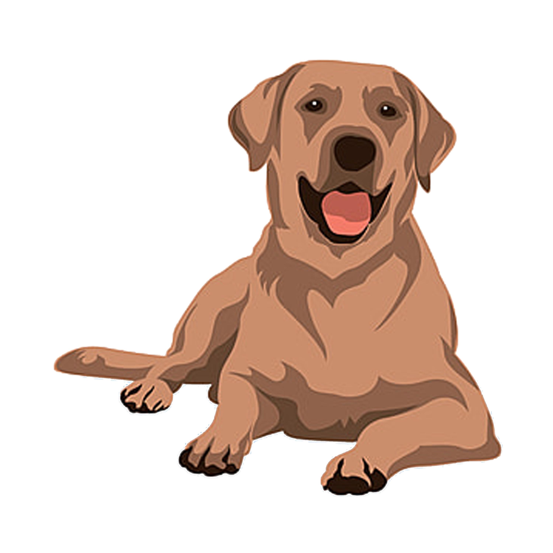 Sticker Sticker D Animaux Chien Par Nurav Design Animal Illustration Dog Vector Cat Vector