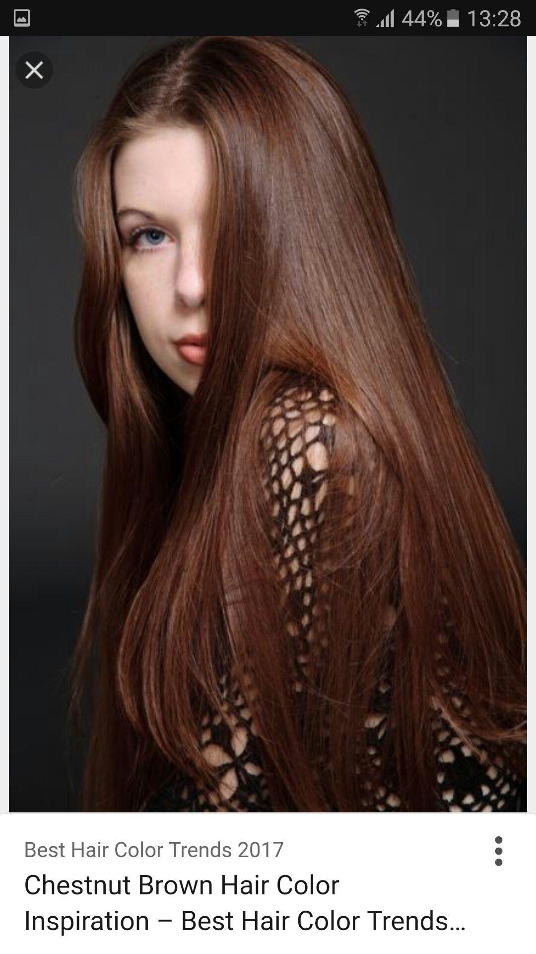 Pin By Ania Mc On Hair Auburn Chestnut Kasztan Pinterest