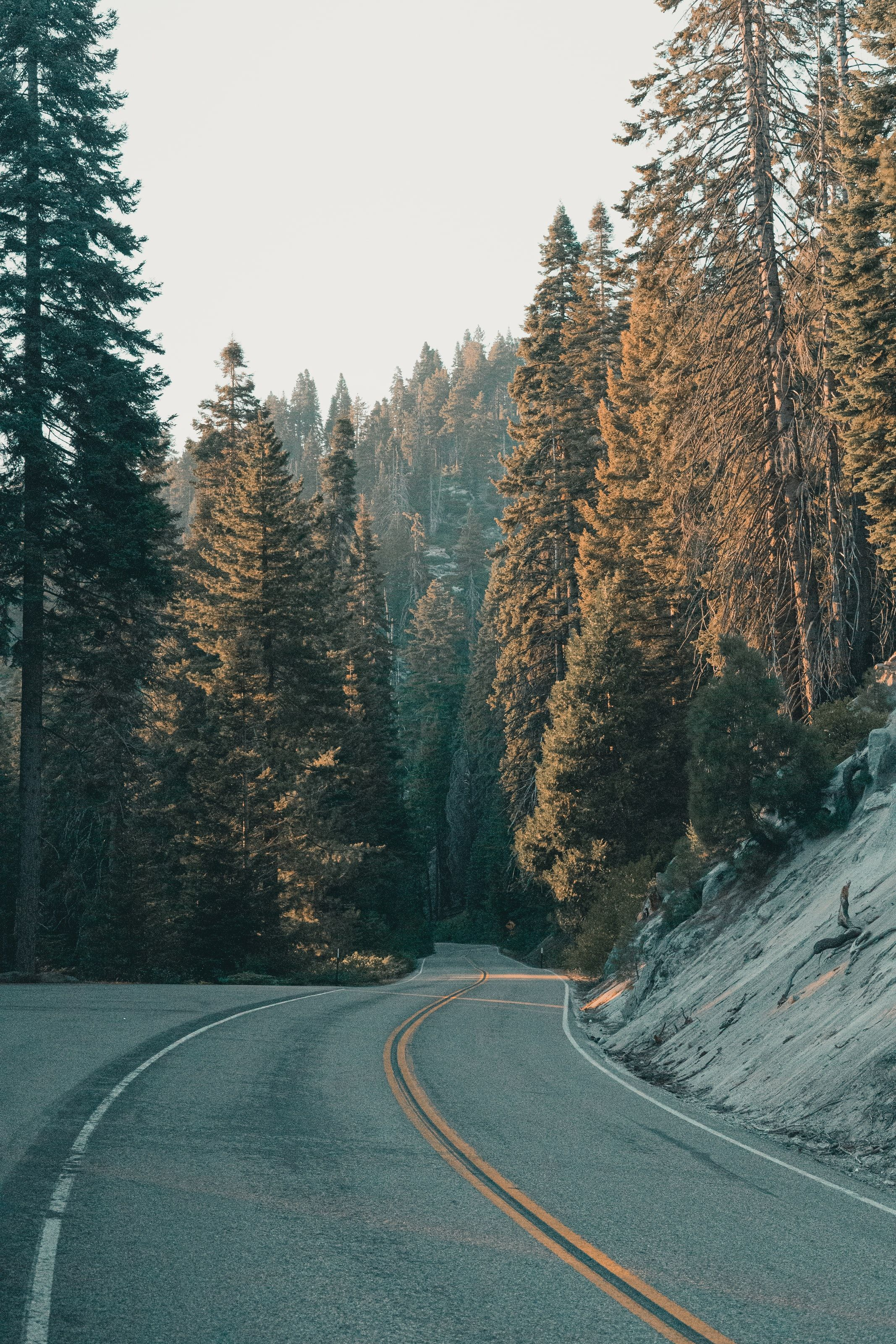 Oliver Niblett Beautiful Photos Of Nature Nature Photos Nature Hd wallpaper road turn trees mountain