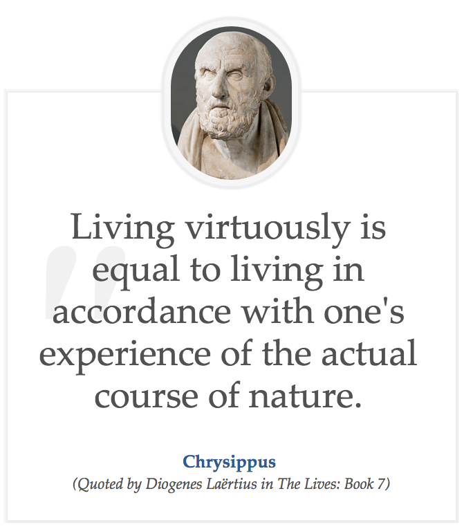 Stoic Quote Chrysippus Insightful Quotes Stoic Quotes Stoicism Quotes