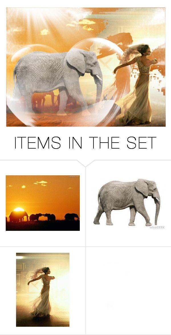 """Elephants"" by jojona-1 ❤ liked on Polyvore featuring art"