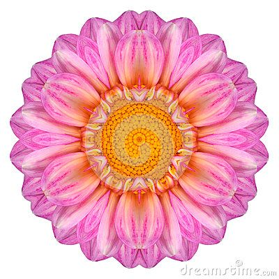 Kaleidoscope Flower Reposted By Dr Veronica Lee Dnp Depew Buffalo Ny Us Mandala Background Dahlia Flower Flowers