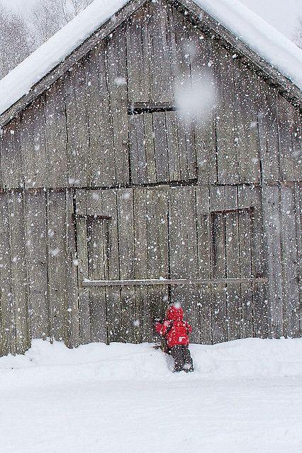 .barn in winter