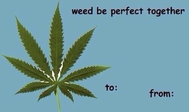 For everyone's true love on Valentine's Day. - http://potterest.com/pin/for-everyones-true-love-on-valentines-day/