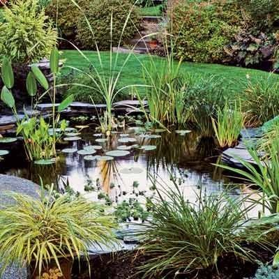 jardines bonitos para casas pequeas