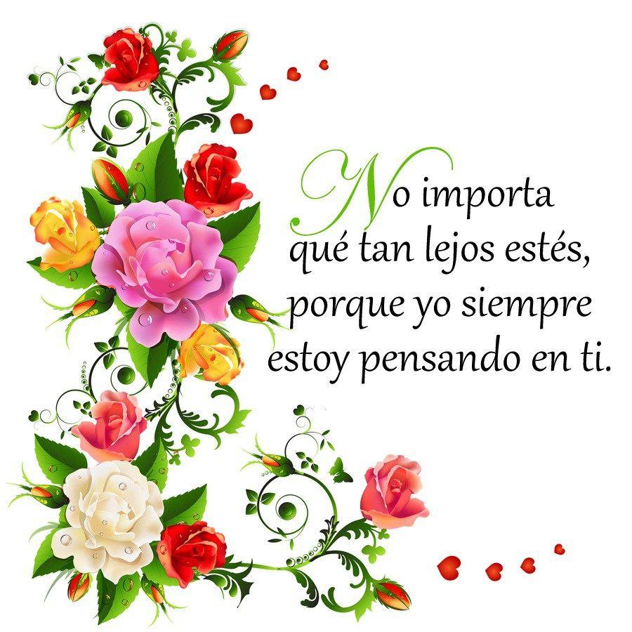 Imagenes De Flores Con Frases Para Un Amor Que Esta Lejos Mama