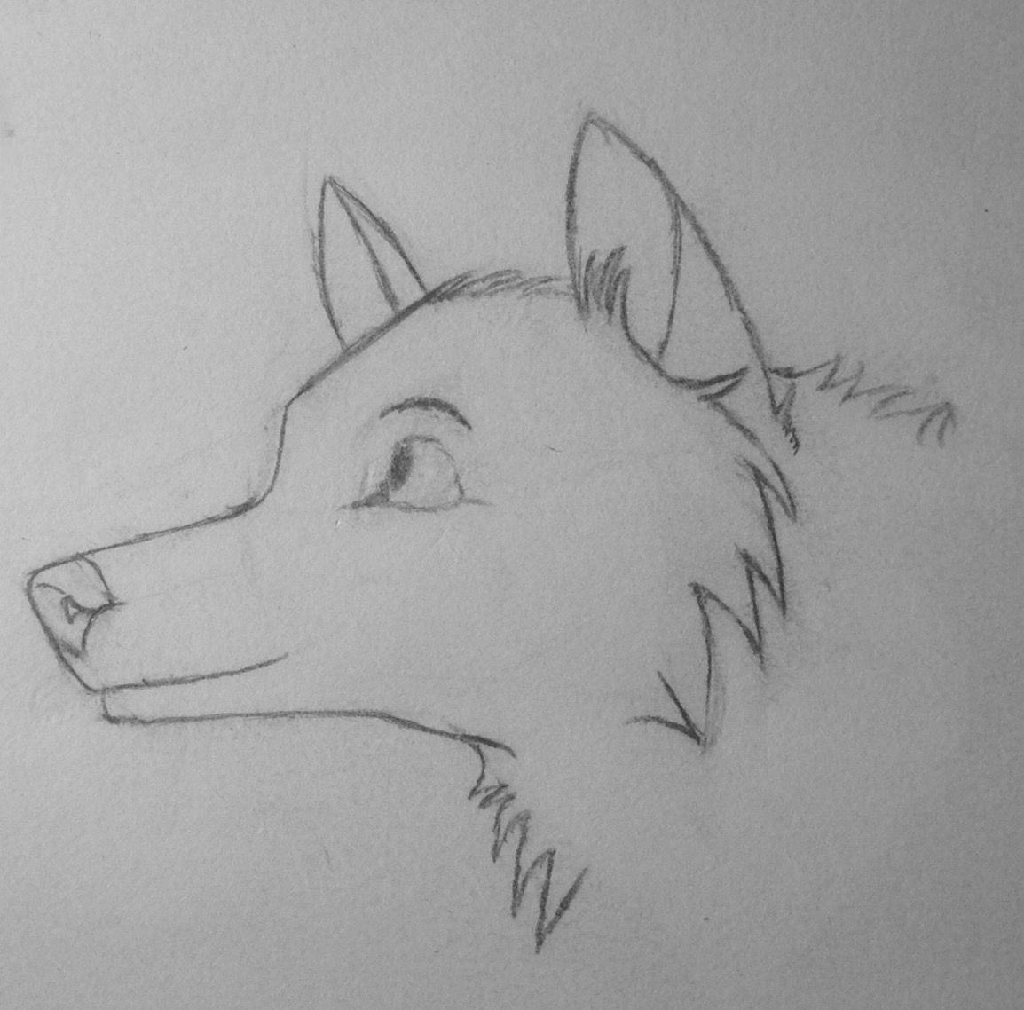 Non-anthro wolf