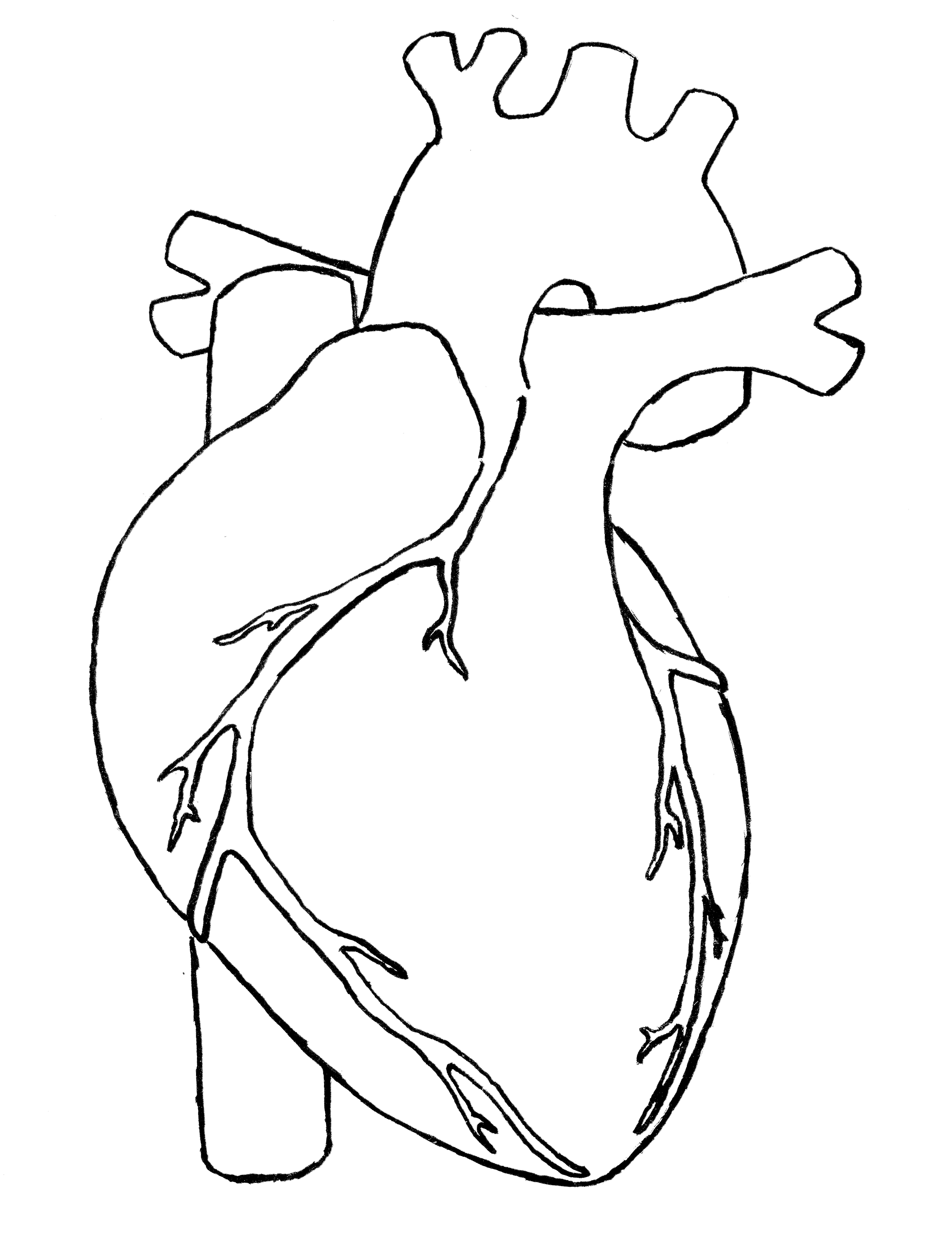 For You With Love | Human heart drawing, Heart sketch ...